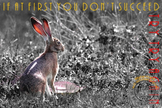 advice, animal, animals, b+w, babies, baby, black and white, bunnies, bunny, childhood, children story, easter, easter bunny, easter rabbit, easter rabbits, encouragement, funny, hare, hares, humor, humorous, inspiration, inspirational, kid, kids, landscape, landscapes, nature, nursery, nursery rhymes, of, rabbit, rabbits, spring, summer, surreal, surrealism, text, the tortoise and the hare, tortoise, turtle, turtles, uplifting, whimsical, wildlife, wing tong, wingsdomain, wisdom, wise, word, words, words of wisdom
