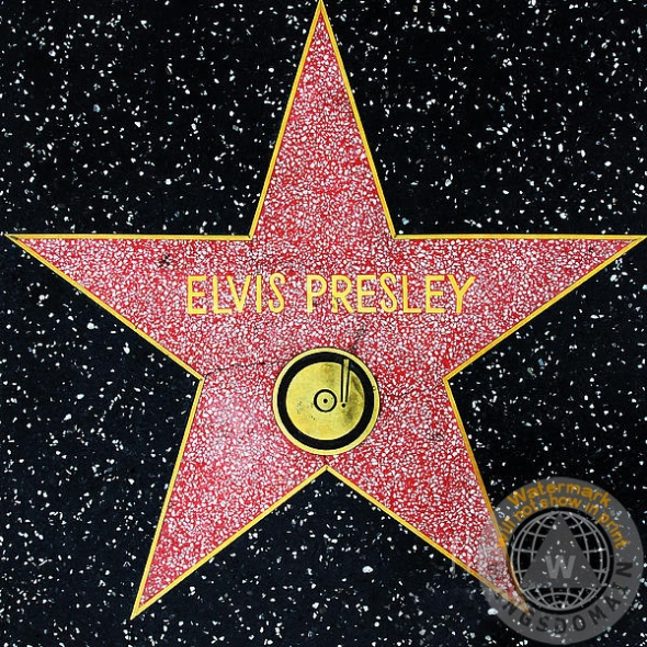hollywood-walk-of-fame-elvis-presley-5d28923-wingsdomain-art-and-photography