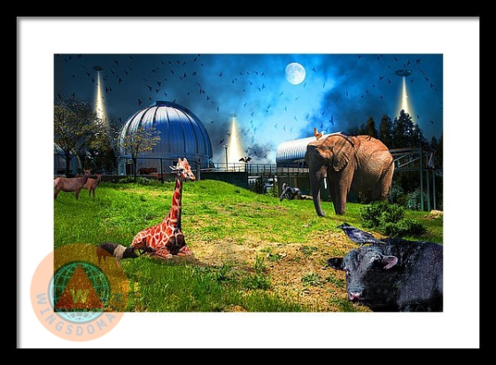 alien, aliens, amy's baking company, animal, art, astrology, astronomy, bay area, bayarea, berkeley, bright, bull, buy, ca, california, canvas print, chabot, chabot space and science center, chicken, colorful, cosmic, cosmos, cow, creative, east bay, eastbay, elephant, fantasy, fiction, fine art, for sale, framed print, fun, giraffe, greeting card, happy, home decor, mars, metal print, moon, nasa, oakland, observatory, photograph, photography, pig, poster, posters, print, prints, purchase, raven, roswell, sci-fi, science, science fiction, scientist, scifi, sell, sky, space, space ship, space ships, spaceship, spaceships, surreal, surrealism, ufo, unidentified flying object, wall art, wall decor, whimsical, wing tong, wingsdomain