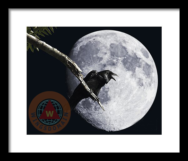 animal, animals, apogee moon, art, avian, aviary, big moon, bird, birds, buy, canvas print, crow, crows, edgar allan poe, fine art, for sale, framed print, full moon, goth, greeting card, halloween, harvest moon, home decor, metal print, moon, moons, mystic, mystical, nature, nevermore, perigee moon, photograph, photography, poe, poster, posters, print, prints, purchase, raven, ravens, sell, super full moon, surreal, surrealism, wall art, wall decor, wildlife, wing chee tong, wing tong, wingsdomain